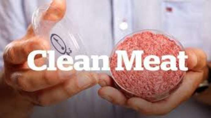 "image for ""Clean Meat"" Offers Potential for Cruelty-Free Eating without Unwanted Health Benefits"