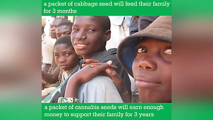 image for Christian aid: Cultivate A Brighter Future Campaign