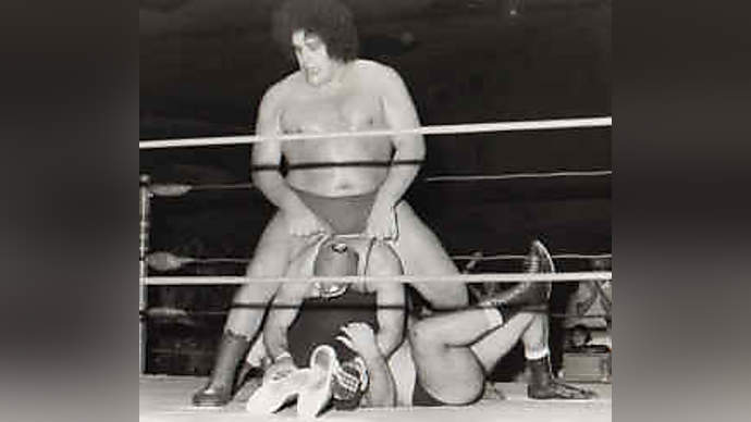 image for Sick Truth Behind Andre The Giant's Death