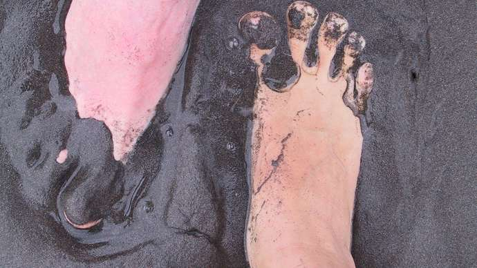 image for Theresa May And Jeremy Corbyn To Mudwrestle