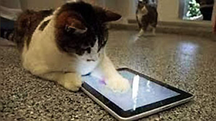image for Apple Announces iPhone For Pets