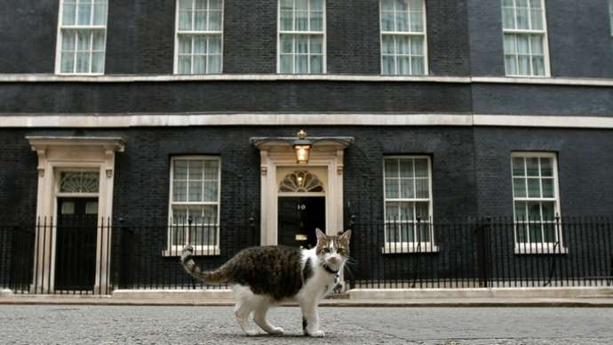 image for Boris butchered and ate Number 10 cat says Downing Street insider
