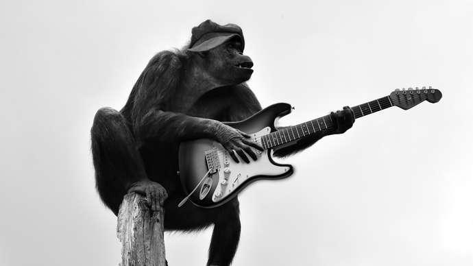 image for Wile E Monkey vs The Billingsgate Runner: Part I