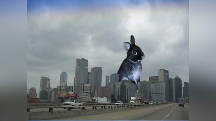 Spoof News Al Qaeda Lets Loose Giant Bunny In Dallas Tx