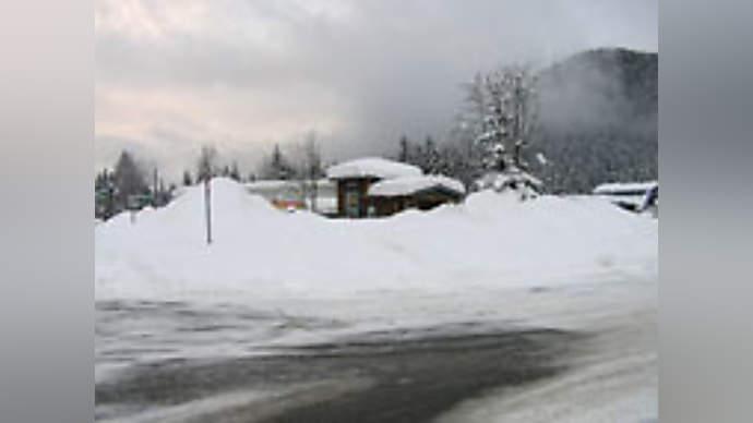 image for Bar Brawl at Winter Olympics