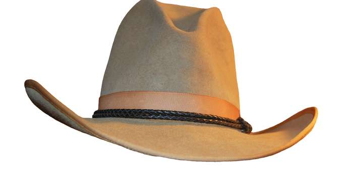 "image for Harry Maguire ""Big Hat-No Cattle"" Said New Manager ""Action"" Jackson"