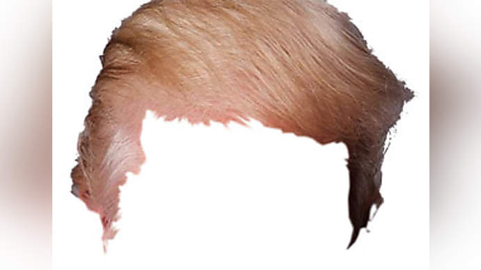image for Blond President Jokes