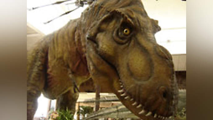 image for Dinosaurs discovered in the Falklands