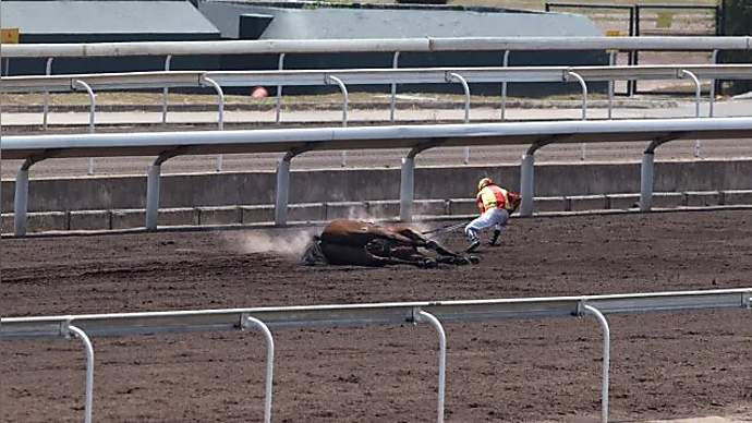 image for Racetrack Officials Award First Place To Jockey Who Drugged Horse