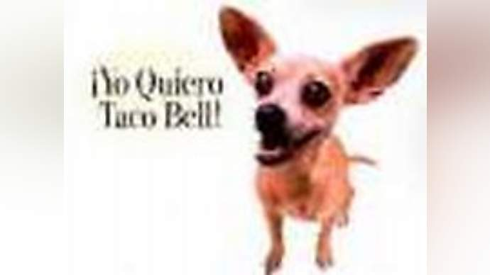image for Chihuahua Sues For Wrongeful Termination