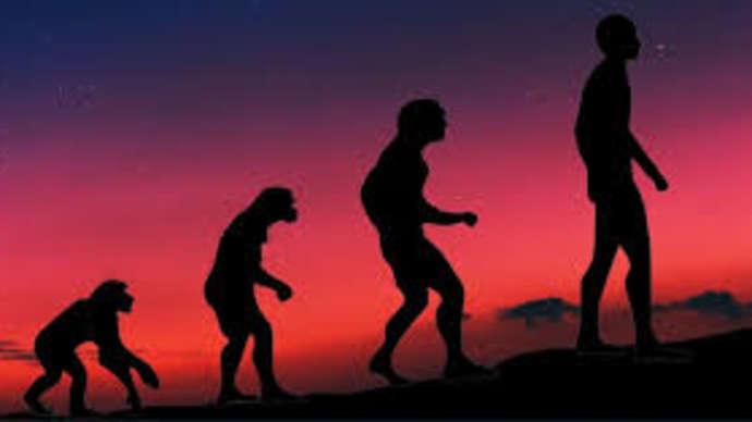 image for Human Evolution Comes to Screeching Halt