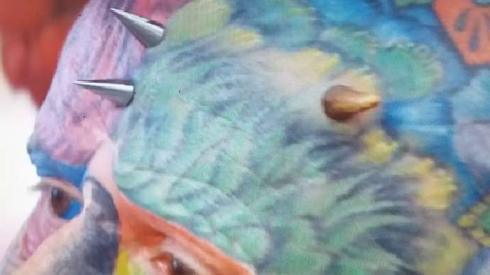 image for Parrotman Has Started To Squawk Like A Parrot