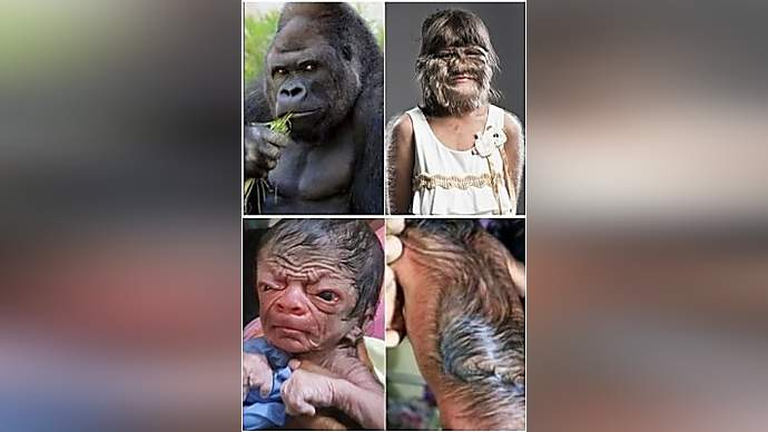 image for LaTania Blackburn Marries a Gorilla Named Amadou
