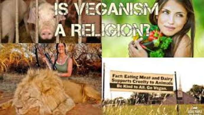 image for Vegan-Friendly Atheist Allows Animals to Go to Heaven