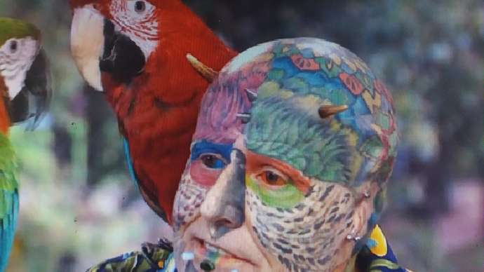 image for Parrotman's Parrots Think He Is A Right Knobhead