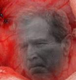 image for President Bush's Image Revered as Religious Icon