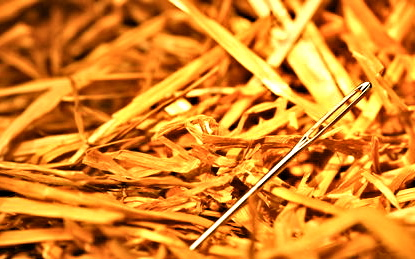 image for Needle Finds Himself in Haystack