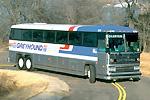 image for Man Massaged Johnson On Bus