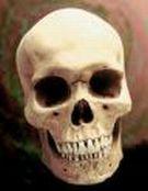 image for Vatican Displays Bones of Jesus Christ While 'Da Vinci Code' Rakes in $224 Million