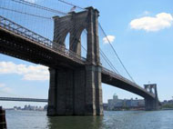 "image for Killer Hemorrhoid To Strike New York City By 2015! ""We're In A World Of Sh1t"": Bloomberg!"