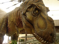 image for Scientists Create Dinosaur Tissue