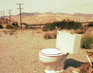 image for Local man leaves toilet seat up