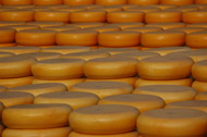 image for UK Cheddar Cheese thiefs get caught with stinky fingers!