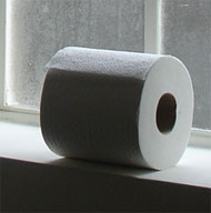 image for Toilet Paper Law - A Wipe Out?