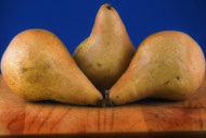 image for A Kansas Farmer Has Developed A Pear That Tastes Like Ribeye Steak