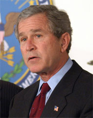 image for Bush 'treated for depression' since Blair resignation announcement