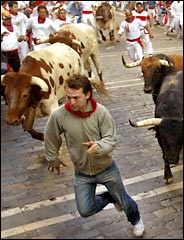 image for Taking the bulls by their poisonous horns in Pamplona