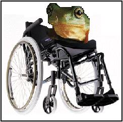 image for Wheelchair-Bound Frogs Sue Leg-Eating French