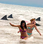 """image for """"Shark Attack"""" Obesity Treatment Works Wonders"""